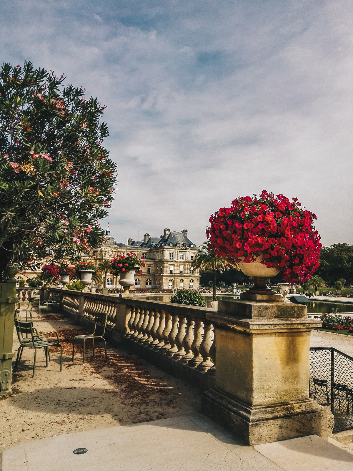 paris-jardin-luxembourg-pink-wish-1